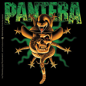 Pantera Images Wallpaper And Background Photos