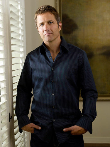 Rob Estes as Harry Wilson