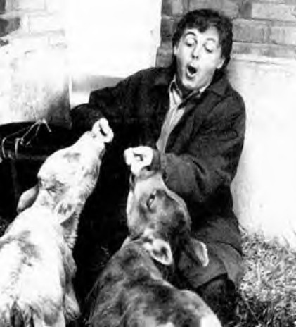 Sir Paul and his friends