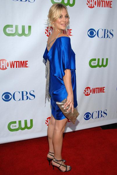 The CBS, CW & Showtime Press Tour Party