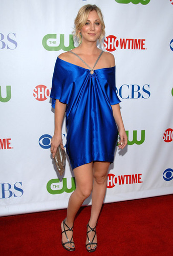 The CBS, CW & Showtime Press Tour Party