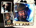 Will.I.Am - william wallpaper