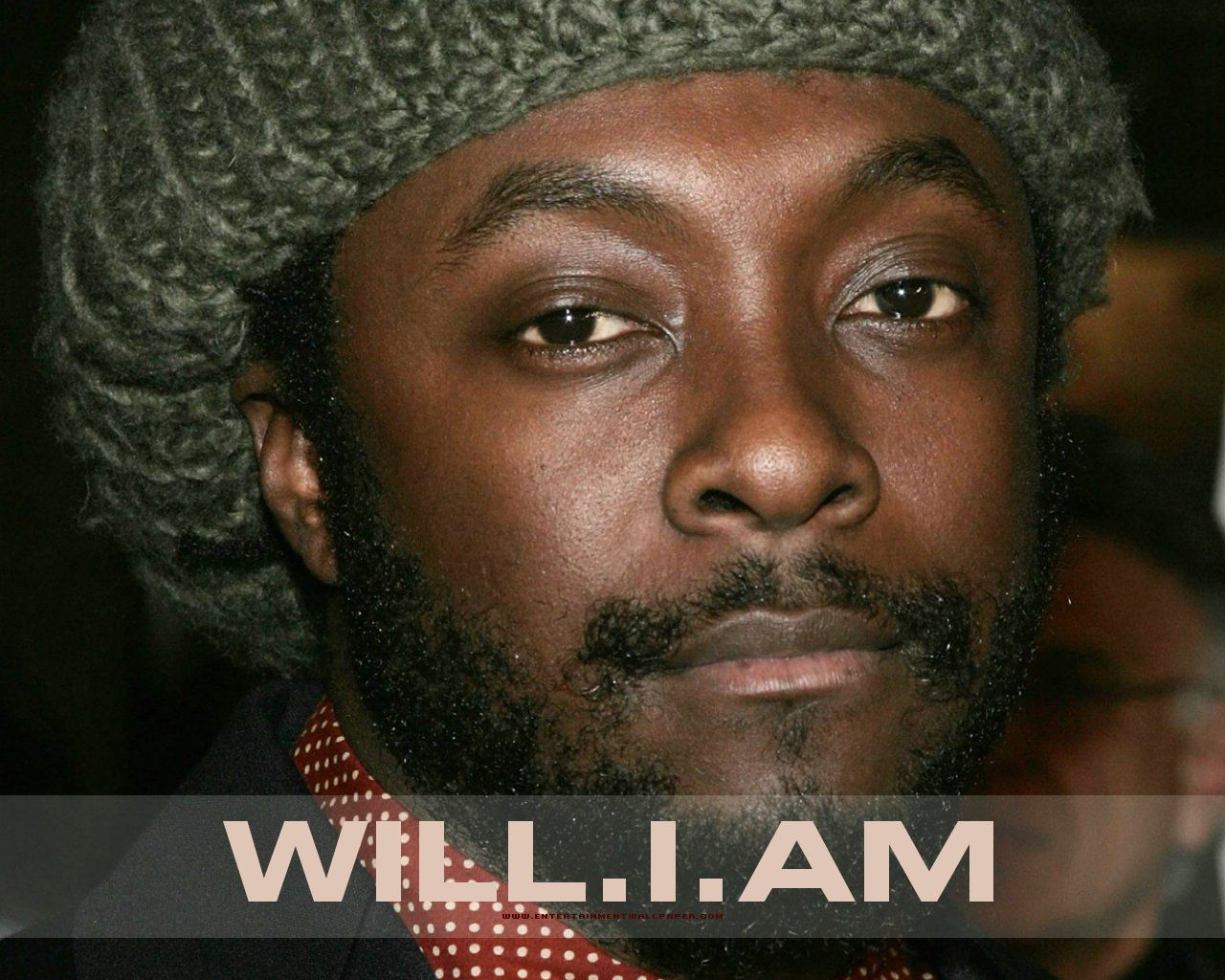 will i am on