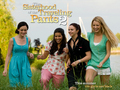 sisterhhod 2 - sisterhood-of-the-traveling-pants wallpaper