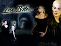 BUFFY & HER VAMPIRES - bangel-vs-spuffy wallpaper