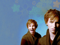 Eddie - eddie-redmayne wallpaper