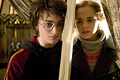 Harry Potter and the GOF - harry-potter-and-the-goblet-of-fire photo