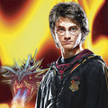 Harry and the dragon - harry-potter-and-the-goblet-of-fire photo