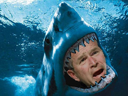 Jaws attacks the devate spot!!