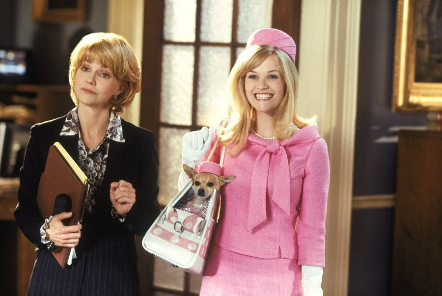 Legally Blonde - Legally Blonde Photo (2273059) - Fanpop