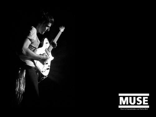 Matthew Bellamy wallpaper with a concert entitled Matt wallpaper
