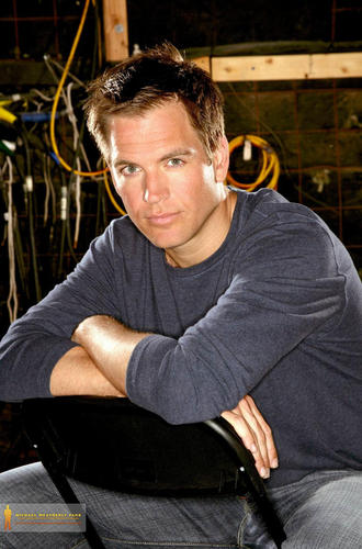 Michael Weatherly wallpaper with a barrow entitled Michael Weatherly