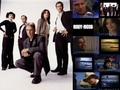 ncis - NCIS Cast wallpaper