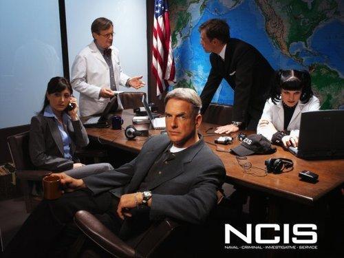 Navy CIS cast