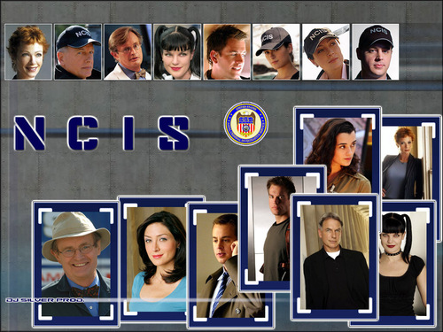 NCIS wallpaper titled NCIS
