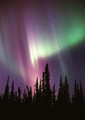 Northern Lights - canada photo