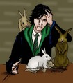 Plot Bunnies!  - fanfiction-net photo