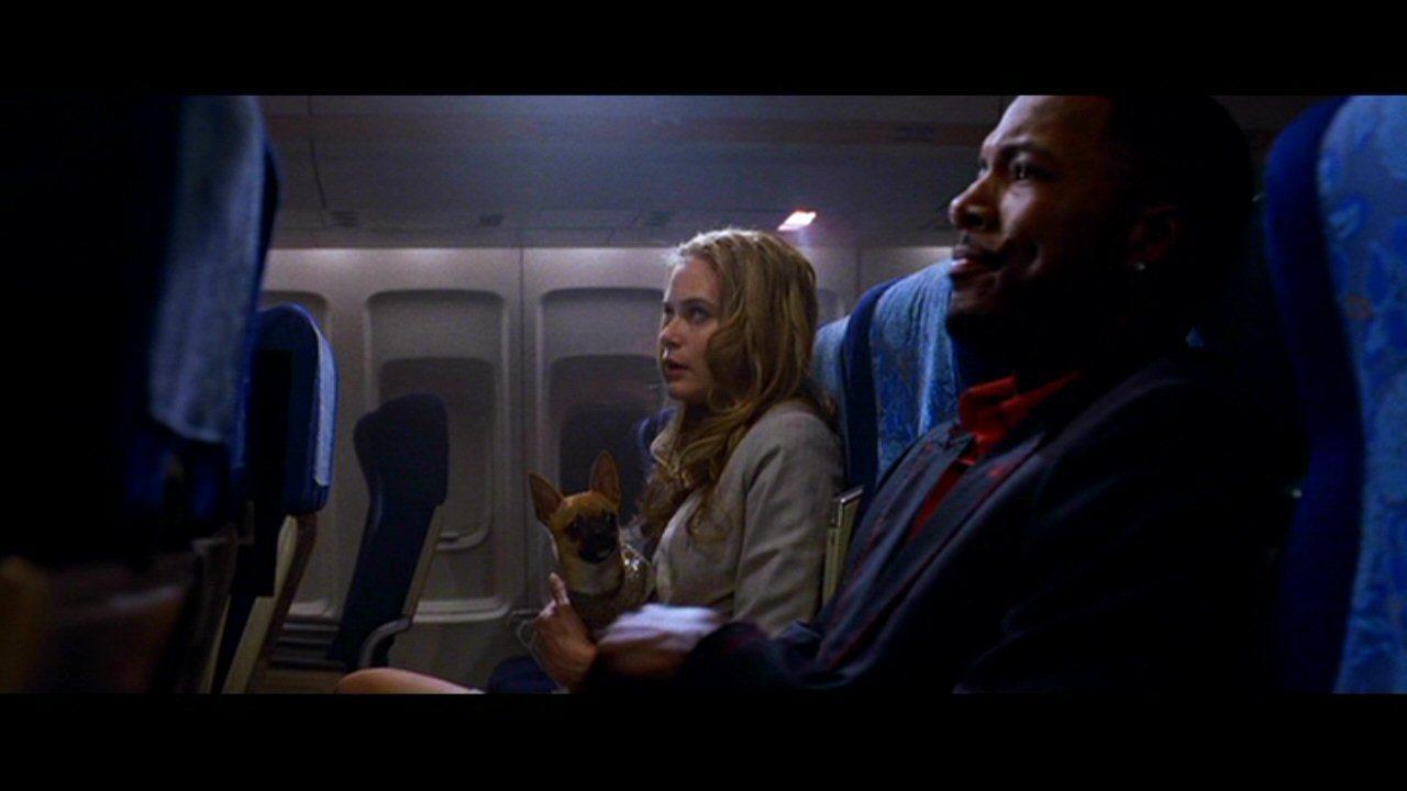 snakes on a plane movie wwwimgkidcom the image kid