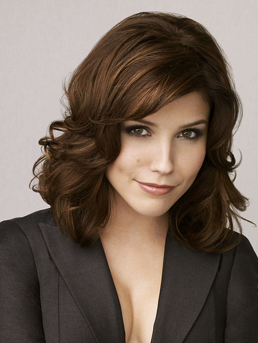 Slike Sophie-Brooke Sophia-Bush-aka-Brooke-Davis-rachel-peyton-and-brooke-2216704-376-500