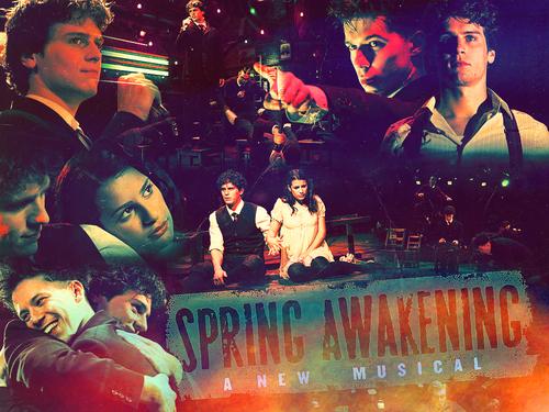 wiki spring awakening musical