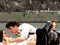 Spring Awakening Lyrics Wallpaper