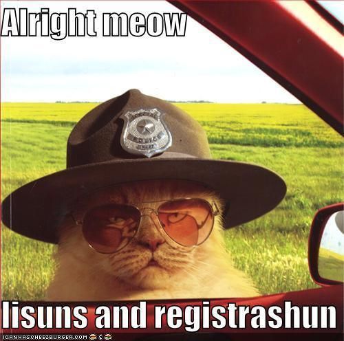 Super Troopers Cat