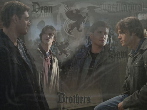 supernatural Brothers WP