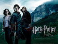 The trio - harry-potter-and-the-goblet-of-fire wallpaper