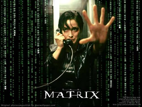 The Matrix wallpaper probably containing a pay phone and a telephone booth called Trinity from The Matrix