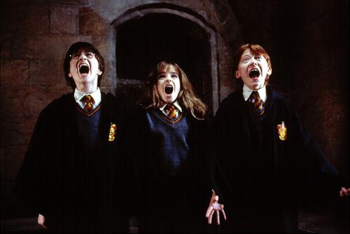harry potter wallpaper entitled Trio