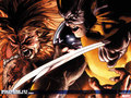 Wolverine vs. Sabretooth - wolverine wallpaper