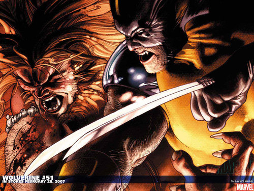 Wolverine images wolverine vs sabretooth hd wallpaper and wolverine wallpaper with anime titled wolverine vs sabretooth voltagebd Images