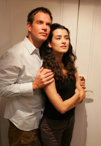 NCIS wolpeyper possibly containing a portrait called Ziva David, Anthony DiNozzo