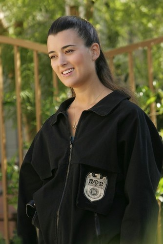NCIS wallpaper possibly containing a portrait titled Ziva David