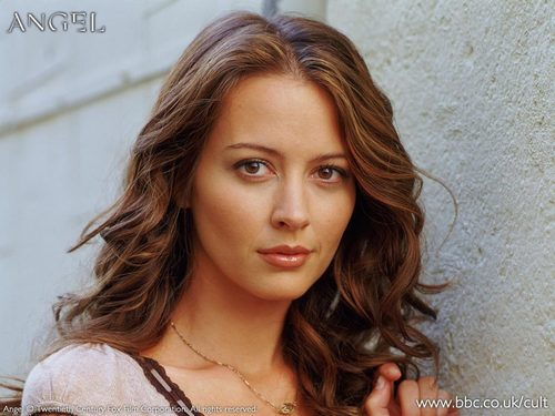 Amy Acker achtergrond containing a portrait called amy as fred