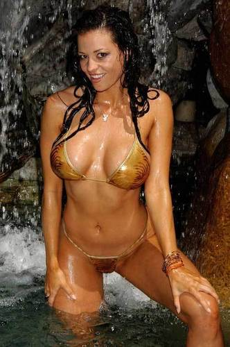 WWE Divas achtergrond containing a bikini entitled candice