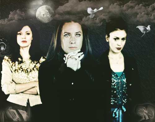 Charmed wallpaper probably containing a well dressed person, a concert, and a mantilla titled charmed