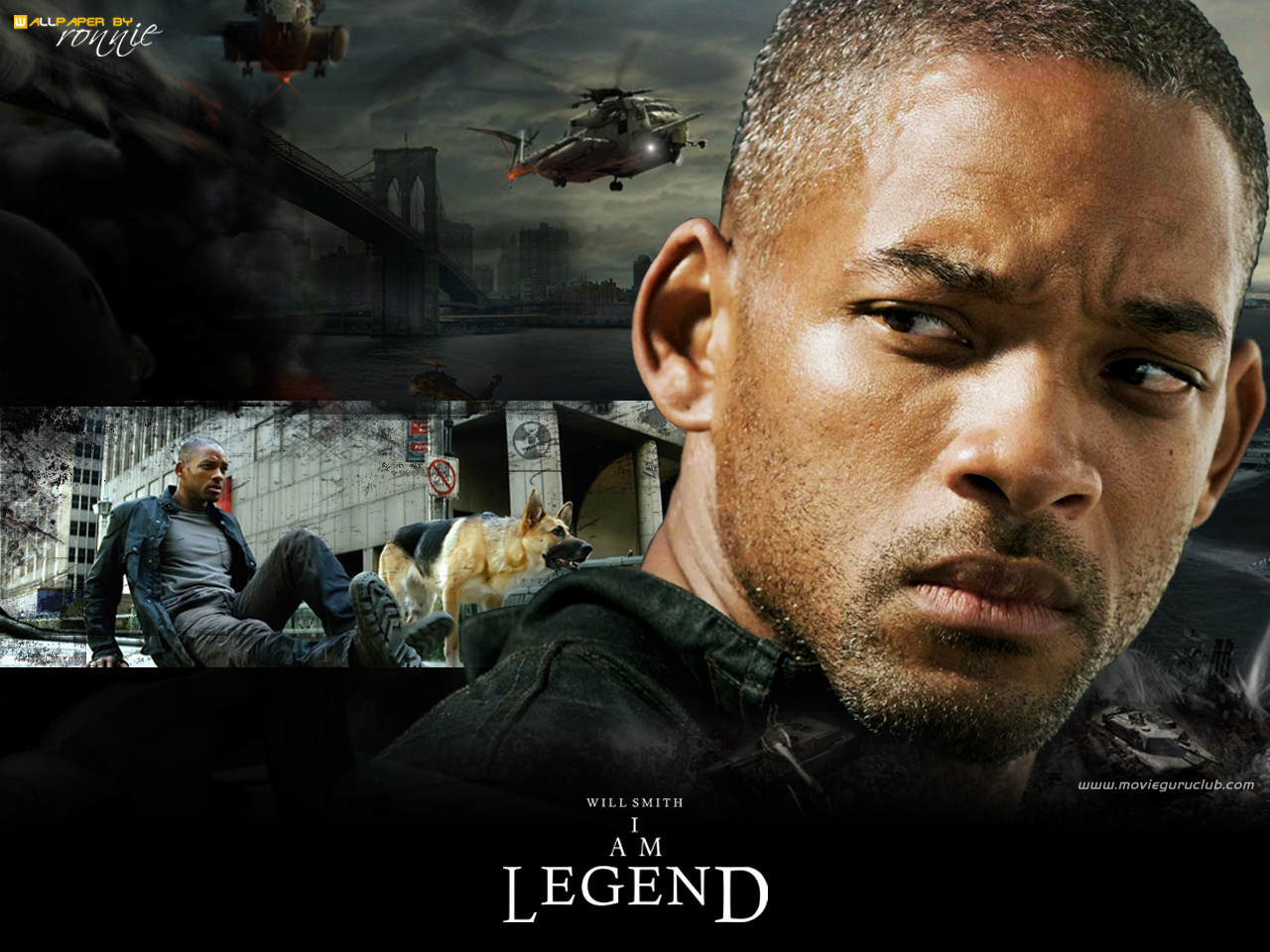 I Am Legend Will Smith i am legend - Movies W...