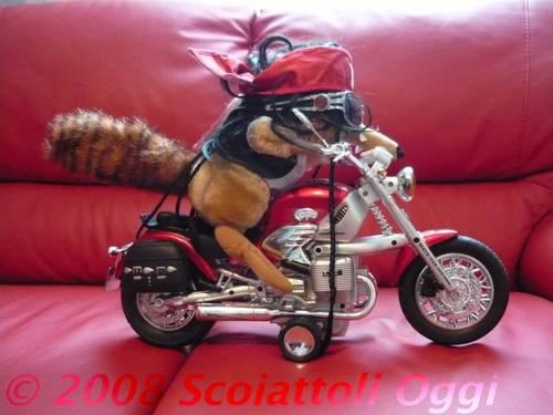motoscrat
