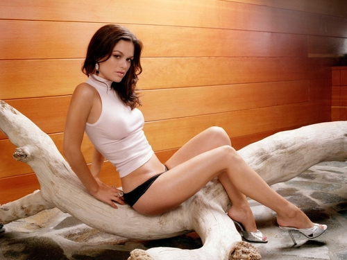 Rachel Bilson wallpaper possibly containing tights called rachel bilson