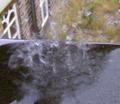 raindrops - photography photo