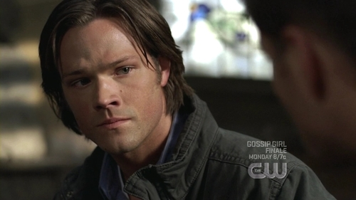 Sam Winchester wallpaper probably with a portrait entitled supernatural