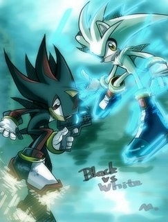 white vs black - silver-the-hedgehog Photo