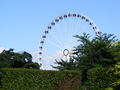 york wheel - photography photo