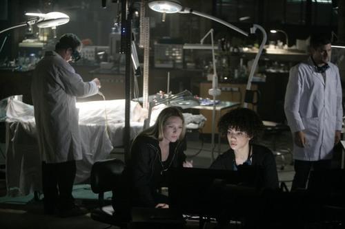 1x2 promotional immagini