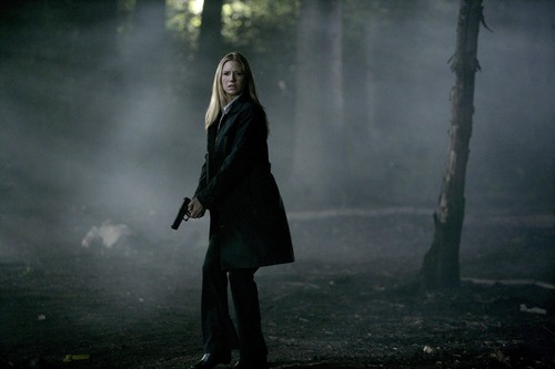 1x4 promotional 画像
