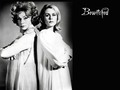 Bewitched - bewitched wallpaper