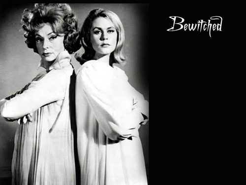 Bewitched wallpaper titled Bewitched