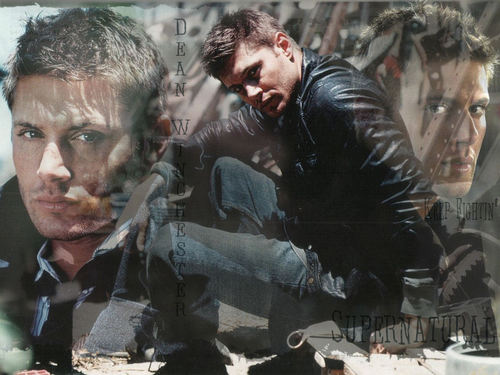DWWP - dean-winchester Wallpaper