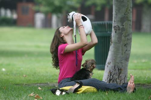 Emmy playing with her Cani in the park